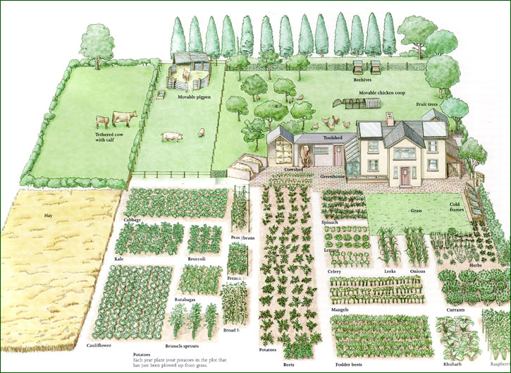 Like this garden plan from one of my favorite books by john seymour